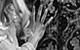 "Спектакль: <b><i>Ундина</i></b><br /><span class=""normal"">Ундина— Марина Коняшкина<br />Рыцарь Ганс— Антон Феоктистов<br /><i></i></span>"