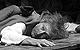"<div class=""it normal"">Дремучий дед— Карэн Бадалов<br> Полина— Полина Агуреева</div><div class=""small it normal"">Фото: Алёна Бессер</div>"
