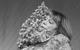 """Спектакль: <b><i>Весенняя лихорадка</i></b><br /><span class=""""normal"""">Сэнди Тайрелл— Артём Панчик<br />Джудит Блисс— Ольга Яковлева<br />Тайрелл Сэнди— Владимир Панчик<br /><i></i><br /><span class=""""small"""">© Екатерина Цветкова</span></span>"""