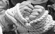 "Спектакль: <b><i>Белоснежка исемь гномов</i></b><br /><span class=""normal"">Ромашка— Ольга Литвинова<br />Кактус— Павел Ващилин<br /><i></i><br /><span class=""small"">© Екатерина Цветкова</span></span>"