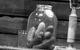 "Спектакль: <b><i>Новый американец</i></b><br /><span class=""normal"">Беляева— Кристина Бабушкина<br />Сергей— Дмитрий Брусникин<br /><i></i><br /><span class=""small"">© Екатерина Цветкова</span></span>"