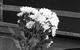 "Спектакль: <b><i>Событие</i></b><br /><span class=""normal"">Ревшин— Игорь Верник<br />Антонина Павловна Опояшина— Александр Семчев<br /><i></i><br /><span class=""small"">© Екатерина Цветкова</span></span>"