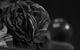 "Спектакль: <b><i>Событие</i></b><br /><span class=""normal"">Антонина Павловна Опояшина— Александр Семчев<br />Писатель Пётр Николаевич— Андрей Давыдов<br /><i></i><br /><span class=""small"">© Екатерина Цветкова</span></span>"