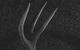 "Спектакль: <b><i>Каренин</i></b><br /><span class=""normal"">Вронский иПациент— Харалд Росенстрем<br />Каренин— Дмитрий Шевченко<br /><i></i><br /><span class=""small"">© Екатерина Цветкова</span></span>"
