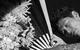 "Спектакль: <b><i>Зойкина квартира</i></b><br /><span class=""normal"">Александр Тарасович Аметистов— Михаил Трухин<br />Зоя Денисовна Пельц— Лика Рулла<br />Мадам Иванова— Ольга Воронина<br />Херувим— Евгений Сангаджиев<br /><i></i><br /><span class=""small"">© Екатерина Цветкова</span></span>"