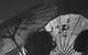 "Спектакль: <b><i>Зойкина квартира</i></b><br /><span class=""normal""><br /><i></i><br /><span class=""small"">© Екатерина Цветкова</span></span>"