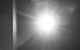 "Спектакль: <b><i>Семейные сцены</i></b><br /><span class=""normal"">Ирина Боженко— Яна Сексте<br /><i></i><br /><span class=""small"">© Екатерина Цветкова</span></span>"
