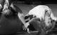 "Спектакль: <b><i>Начнём всё сначала / Circle Mirror Transformation</i></b><br /><span class=""normal"">Марти— Дарья Юрская<br />Тереза— Ольга Воронина<br /><i></i><br /><span class=""small"">© Екатерина Цветкова</span></span>"