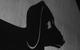 "Спектакль: <b><i>Загадочное ночное убийство собаки</i></b><br /><span class=""normal"">актриса— Анна Даукаева<br /><i></i><br /><span class=""small"">© Екатерина Цветкова</span></span>"