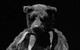 "Спектакль: <b><i>Йоханн Хольтроп. Отпечаток общества</i></b><br /><span class=""normal"">актер— Валерий Трошин<br />актер— Дмитрий Готсдинер<br /><i></i><br /><span class=""small"">© Екатерина Цветкова</span></span>"
