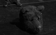 "Спектакль: <b><i>Йоханн Хольтроп. Отпечаток общества</i></b><br /><span class=""normal"">актер— Павел Ильин<br />актер— Валерий Трошин<br /><i></i><br /><span class=""small"">© Екатерина Цветкова</span></span>"