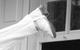 "Спектакль: <b><i>№13D</i></b><br /><span class=""normal"">Ричард Уилли— Igor Vernik<br />Джордж Пигден— Sergey Ugryumov<br />Тело мужское— Leonid Timtsunik<br /><i></i><br /><span class=""small"">© Ekaterina Tsvetkova</span></span>"