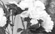 "Спектакль: <b><i>№13D</i></b><br /><span class=""normal"">Памела— Кристина Бабушкина<br />Джордж Пигден— Сергей Угрюмов<br /><i></i><br /><span class=""small"">© Екатерина Цветкова</span></span>"