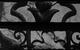 "Спектакль: <b><i>Луизиана</i></b><br /><span class=""normal"">Андрей— Виктор Хориняк<br />Тамара— Наташа Швец<br /><i></i><br /><span class=""small"">© Екатерина Цветкова</span></span>"