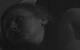 "Спектакль: <b><i>Zoya's Apartment</i></b><br /><span class=""normal"">Зоя Денисовна Пельц— Lika Rulla<br />Борис Семёнович Гусь-Ремонтный— Alexey Kravchenko<br /><i></i><br /><span class=""small"">© Ekaterina Tsvetkova</span></span>"