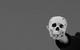 "Спектакль: <b><i>Мефисто</i></b><br /><span class=""normal"">Хендрик Хефген— Алексей Кравченко<br />Телохранитель— Максим Стоянов<br />Моц— Надежда Борисова<br /><i></i><br /><span class=""small"">© Екатерина Цветкова</span></span>"