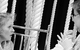 "Спектакль: <b><i>The Duel</i></b><br /><span class=""normal"">Надежда Фёдоровна— Natalia Rogozhkina<br />Марья Константиновна— Olga Vasil'eva<br /><i></i><br /><span class=""small"">© Ekaterina Tsvetkova</span></span>"