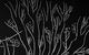 """Спектакль: <b><i>Иов</i></b><br /><span class=""""normal"""">Мария— Яна Гладких<br />Тавифа— Дарья Макарова<br />Илья Савин— Алексей Краснёнков<br />Борис Савин— Игорь Хрипунов<br />Лидия Семёновна Савина— Ольга Лапшина<br /><i></i><br /><span class=""""small"""">© Екатерина Цветкова</span></span>"""