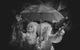 "<div class=""normal"">актриса — Евгения Курова<br />Юлия Михеева</div><div class=""small it normal"">Фото: Женя Сирина</div>"