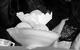 "Спектакль: <b><i>Событие</i></b><br /><span class=""normal"">Элеонора Шнап— Дарья Мороз<br />Мадам Вагабундова— Ольга Барнет<br />Тётя Женя— Ольга Литвинова<br /><i></i><br /><span class=""small"">© Екатерина Цветкова</span></span>"