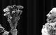 "Спектакль: <b><i>Macbeth</i></b><br /><span class=""normal"">Банко, Дух Банко— Danil Steklov<br />Макбет— Alexey Kravchenko<br />Дункан, Убийца, Врач— Roza Khairullina<br /><i></i><br /><span class=""small"">© Ekaterina Tsvetkova</span></span>"