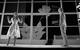 "Спектакль: <b><i>Dreamworks* *Мечтасбывается</i></b><br /><span class=""normal"">Элизабет— Инна Сухорецкая<br />Дэвид— Филипп Янковский<br /><i></i><br /><span class=""small"">© Екатерина Цветкова</span></span>"