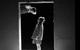 "<div class=""normal"">Слава &mdash; Артём Цуканов<br />Катя &mdash; Яна Гладких</div><div class=""small it normal"">Фото: Дмитрий Мороз</div>"