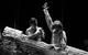 """Спектакль: <b><i>Конёк-Горбунок</i></b><br /><span class=""""normal"""">Конёк— Алексей Краснёнков<br />Иван— Алексей Варущенко<br /><i></i><br /><span class=""""small"""">© Екатерина Цветкова</span></span>"""