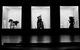 "Спектакль: <b><i>The Man ofFish</i></b><br /><span class=""normal""><br /><i></i><br /><span class=""small"">© Ekaterina Tsvetkova</span></span>"