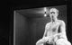 "Спектакль: <b><i>The Man ofFish</i></b><br /><span class=""normal"">Бенуа— Andrey Burkovsky<br /><i></i><br /><span class=""small"">© Ekaterina Tsvetkova</span></span>"