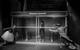 "<div class=""it normal"">Сестра— Вера Строкова, Мать— Полина Айрапетова, Герой— Юрий Титов</div><div class=""small it normal"">Фото: Елена Морозова</div>"