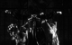 "<div class=""normal"">Армэн Арушанян<br />Кирилл Трубецкой<br />Маруся Пестунова<br />Иван Дергачёв<br />Ясмина  Омерович <br />Ирина Пегова</div><div class=""small it normal"">Фото: Екатерина Цветкова</div>"