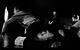 "<div class=""normal"">Гриша<span class=""bp""> </span><span class=""bs"">(</span>Дробужинский) &mdash; Юрий Бутусов<br />Юлька &mdash; Елизавета Янковская<br />Стасик &mdash; Павел Ворожцов<br />Лиза &mdash; Надежда Калеганова</div><div class=""small it normal"">Фото: Екатерина Цветкова</div>"