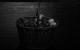 "<div class=""normal"">Музыкальное оформление &mdash; Валерий Трошин<br />актер &mdash; Эдуард Чекмазов<br />актер &mdash; Алексей Краснёнков<br />актер &mdash; Павел Ващилин<br />актриса &mdash; Янина Колесниченко<br />актриса &mdash; Юлия Ковалёва<br />актриса &mdash; Кристина Бабушкина<br />актриса &mdash; Татьяна Розова<br />актриса &mdash; Ксения Теплова</div><div class=""small it normal"">Фото: Екатерина Цветкова</div>"