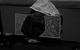 "<div class=""normal"">Сергей Сергеевич &mdash; Сергей Сосновский<br />Артём &mdash; Виктор Хориняк<br />Ксения Ивановна &mdash; Янина Колесниченко<br />Жанна &mdash; Юлия Ковалёва<br />Алиса &mdash; Ольга Воронина</div><div class=""small it normal"">Фото: Екатерина Цветкова</div>"
