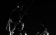 "<div class=""normal"">Соланио &mdash; Олег Гаас<br />Салерио &mdash; Никита Карпинский<br />Лоренцо &mdash; Кузьма Котрелёв</div><div class=""small it normal"">Фото: Александр Иванишин</div>"