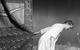 "<div class=""normal"">Наталья Петровна &mdash; Наталья Рогожкина<br />Алексей Николаевич Беляев &mdash; Кузьма Котрелёв</div><div class=""small it normal"">Фото: Александр Иванишин</div>"